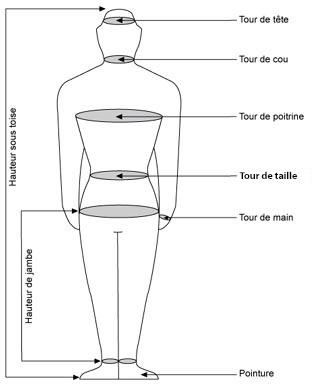 Correspondance des tailles for Taille d un albizia